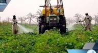 L'ISRA EXPÉRIMENTE UNE SERRE À SÉSSÈNE POUR LUTTER CONTRE LES CONTRAINTES EN MILIEU AGRICOLE