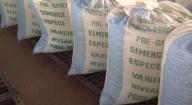 24 tonnes de semences certifiées en souffrance à Kelle Guèye