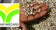 Lancement à Dakar de la première plateforme électronique ouest-africaine sur les semences